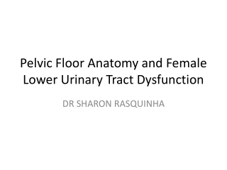 UTEROVAGINAL PROLAPSE  STRESS INCONTINENCE.