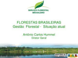 FLORESTAS BRASILEIRAS   Gest o  Florestal -  Situa  o atual   Ant nio Carlos Hummel Diretor Geral