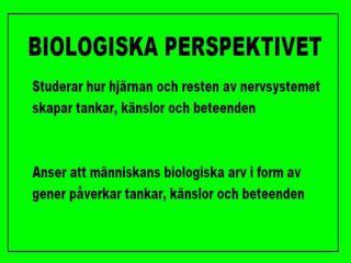 Biologiska perspektivet  uppdaterad 2011