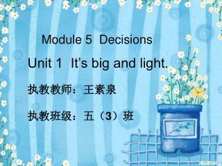 Module 5  Decisions