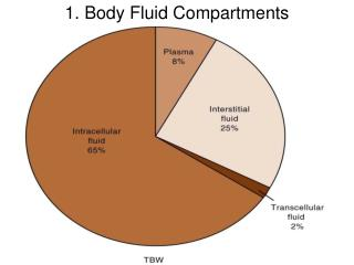 1. Body Fluid Compartments