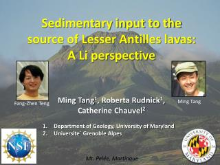 Sedimentary input to the source of Lesser Antilles lavas: A Li perspective