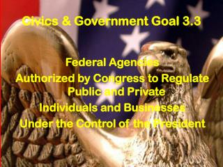 Civics & Government Goal 3.3