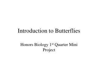 Introduction to Butterflies