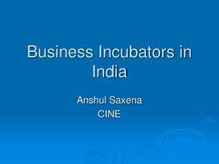 Business Incubators in India