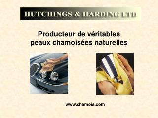 Producteur de v ritables  peaux chamois es naturelles