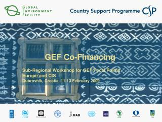 GEF Co-Financing