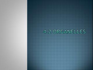 4.2 Organelles