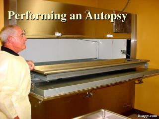Performing an Autopsy