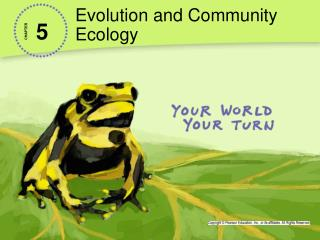 Evolution and Community Ecology