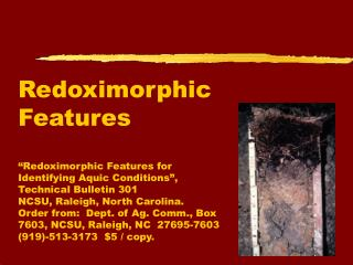 Redoximorphic Features   Redoximorphic Features for Identifying Aquic Conditions , Technical Bulletin 301  NCSU, Raleigh