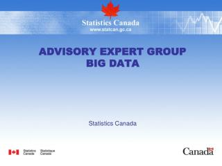 Advisory Expert Group Big Data