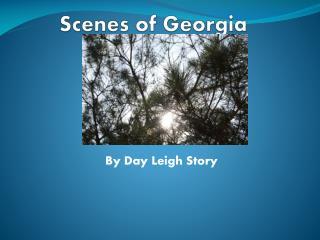 Scenes of Georgia
