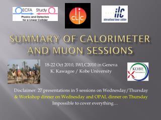 Summary of Calorimeter and  Muon  sessions