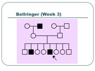 Bellringer (Week 3)