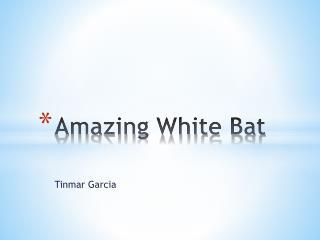 Amazing White Bat