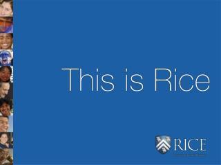 This is Rice   Unique origins