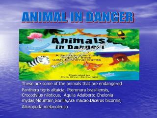ANIMAL IN DANGER