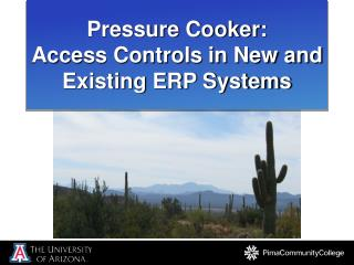 Pressure Cooker:  Access Controls in New and Existing ERP Systems