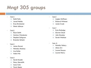 Mngt 305 groups