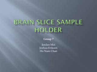 Brain Slice Sample Holder