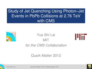 Study of Jet Quenching Using Photon–Jet Events in  PbPb  Collisions at 2.76  TeV  with CMS