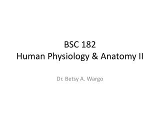 BSC 182 Human Physiology & Anatomy II