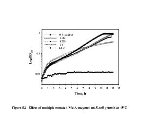 Figure S2 Effect of multiple mutated MetA enzymes on  E.coli  growth at 45 0 C