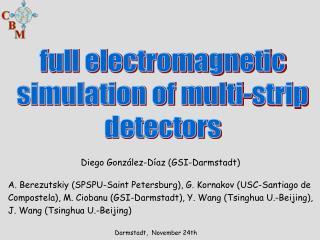 full electromagnetic  simulation of multi-strip  detectors