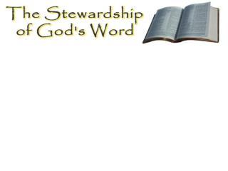 What is a Steward?