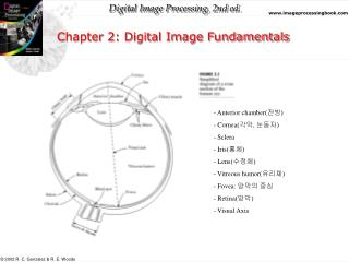 Chapter 2: Digital Image Fundamentals