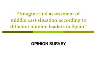 """Imagine and assessment of middle east situation according to different opinion leaders in Spain"""