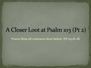 A Closer Loot at Psalm 103 (Pt 2)