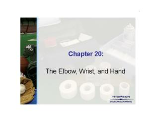 SM Chapter 20 The Elbow Wrist and Hand PP