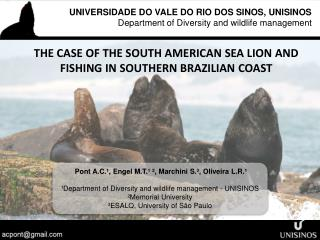 THE CASE OF THE SOUTH AMERICAN SEA LION AND FISHING IN SOUTHERN BRAZILIAN COAST