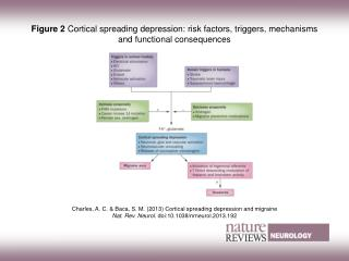 Charles, A. C. & Baca, S. M.  (2013) Cortical spreading depression and migraine