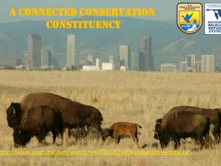 A Connected Conservation  Constituency