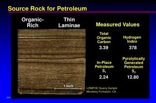 Source Rock for Petroleum