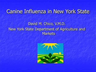 Canine Influenza in New York State