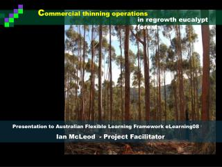 C ommercial thinning operations