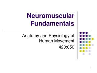 Neuromuscular Fundamentals