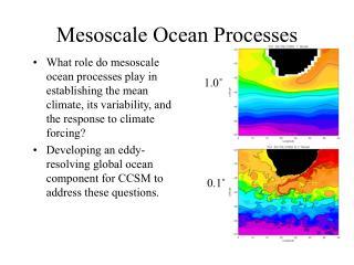 Mesoscale Ocean Processes