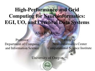 High-Performance and Grid Computing for Neuroinformatics: EGI, UO, and Cerebral Data Systems