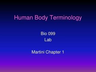 Human Body Terminology