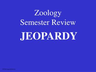 Zoology Semester Review