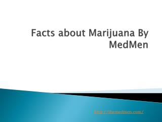 Facts about Marijuana By MedMen