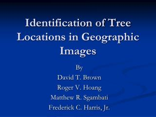 Identification of Tree Locations in Geographic Images
