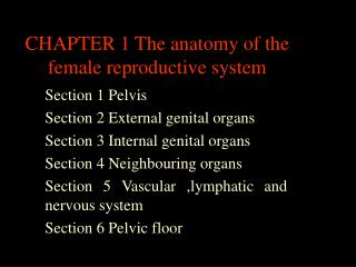 CHAPTER 1 The anatomy of the female reproductive system