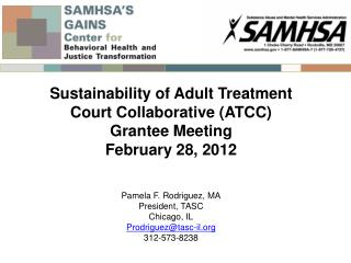 Sustainability of Adult Treatment Court Collaborative (ATCC) Grantee  Meeting February 28,  2012