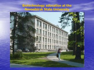 Biotechnology education at the Novosibirsk State University